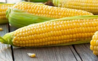 Кукуруза при гастрите – серьезное подспорье мясному блюду