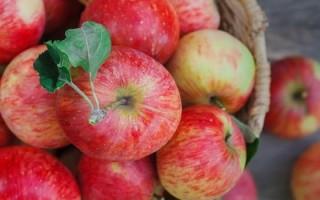 Яблоки при изжоге: польза или вред