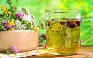 Лечение эрозивного гастрита: терапия народными средствами