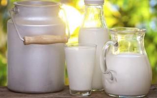 Можно ли употреблять молоко при гастрите, его польза
