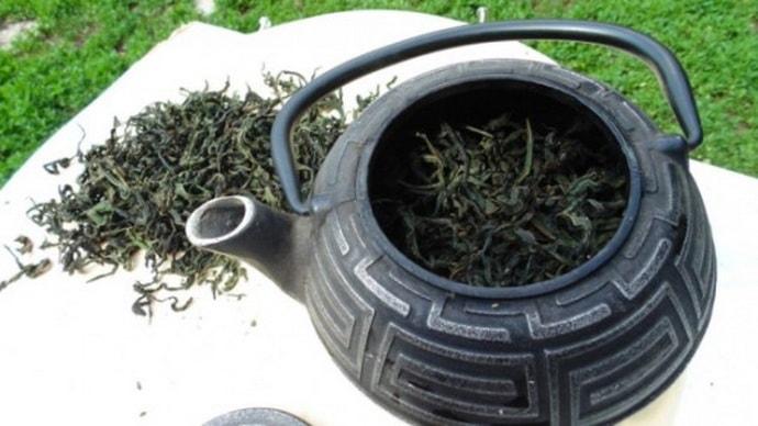 Польза иван-чая при гастрите