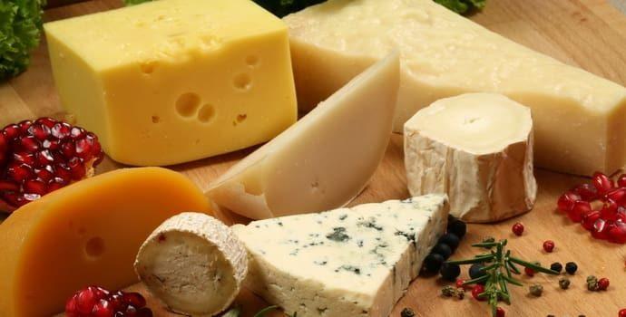 Можно ли употреблять сыр при гастрите