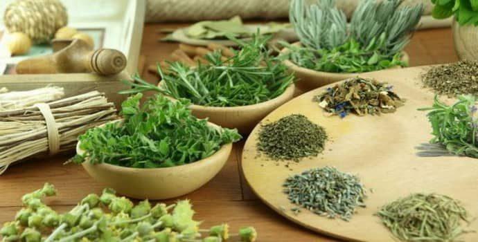 Травы, помогающие от изжоги: список, рецепты