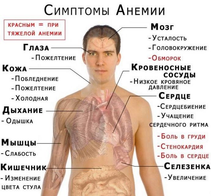 Анемия при дисбактериозе
