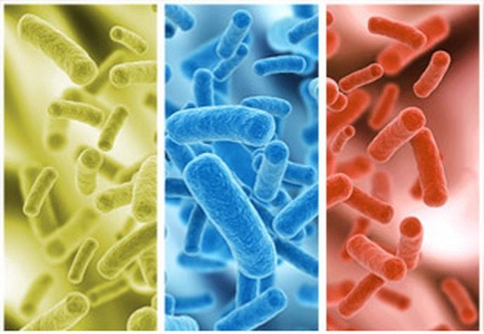 Лечение дисбактериоза