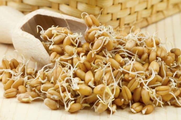 Ростки пшеницы при гастрите