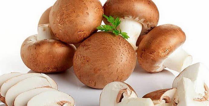 Гастрит: можно ли есть грибы и в каком виде