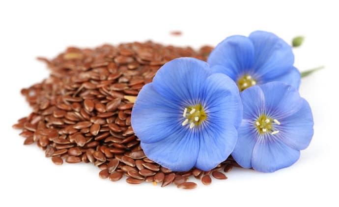 Помогут ли семена льна от изжоги