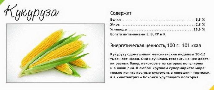 Можно ли есть кукурузу при гастрите