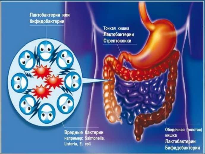 Свечи от дисбактериоза