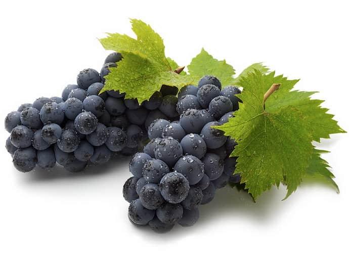 Виноград при гатмрите