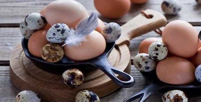 Яйца при гастрите: куриные и перепелиные, польза и вред