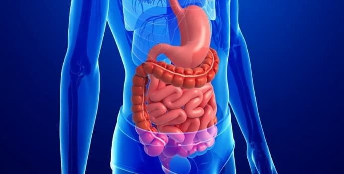 Причины и симптомы хронического дисбактериоза, и как победить болезнь