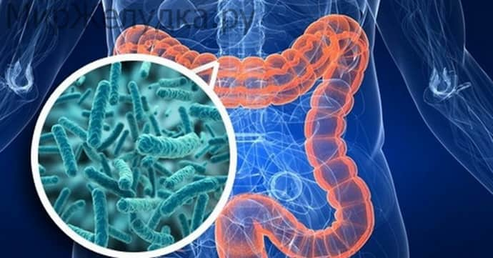 Дисбактериоз кишечника лечение в домашних