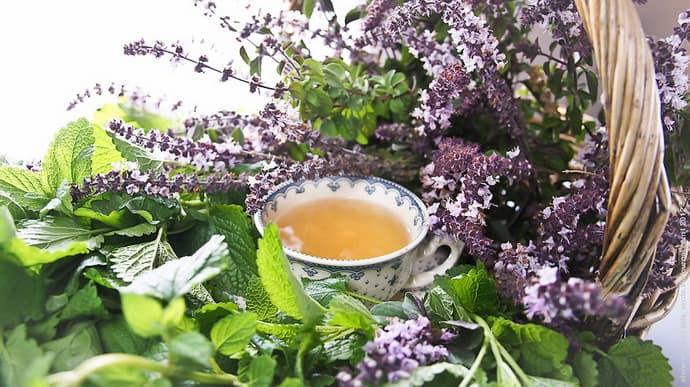 Лечебный чай при паропрактите